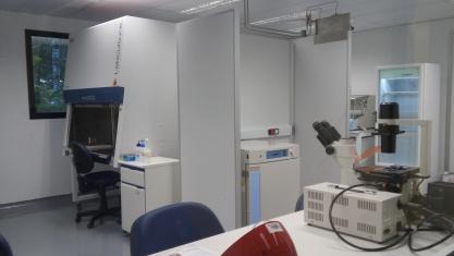 Laboratorio de Cultivo Celular